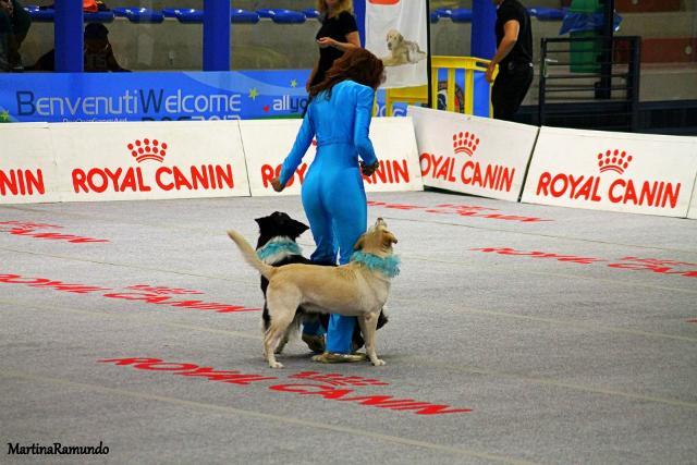 dogdance2.jpg